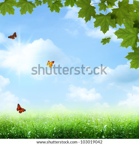 Under the blue skies. spring and summer backgrounds