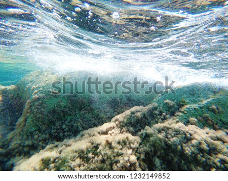 under the water #1232149852