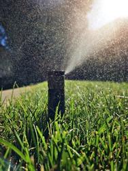 Underground Sprinkler misting in Lawn.