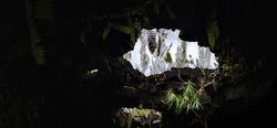 Underground volcanic cave exploration in Reunion island , speleology tourism, France.