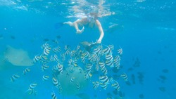 UNDERWATER: Beautiful exotic fish and stingrays are fed by two fearless divers exploring the scenic ocean. Young tourists snorkeling during their vacation in Maldives feed the breathtaking sea life.