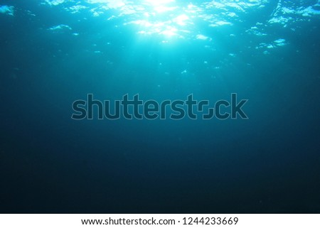 Underwater blue background  #1244233669