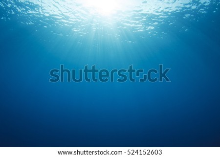 Underwater blue background in sea #524152603