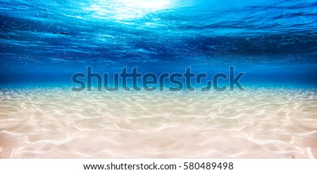 underwater blue ocean wide panorama background with sandy sea bottom