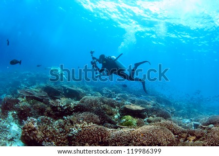 Underwater cameraman enjoys a scuba dive on a coral reef #119986399