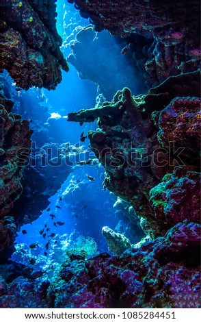 Underwater cave sunbeam view. Coral fishes in underwater cave vertical scene #1085284451
