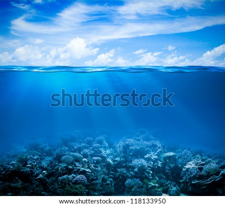Stock Photo Underwater coral reef seabed view with horizon and water surface split by waterline
