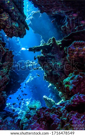 Underwater deep rock pass in depth. Underwater cave entrance. Underwater depth scene