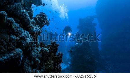Underwater diver in deep sea dive Photo stock ©