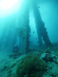 Underwater diver in the deep of the blue ocean with view of corals and fishes.