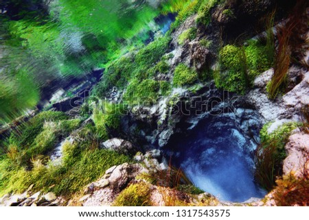 Underwater freshwater. Mysterious freshwater river. Spring water #1317543575