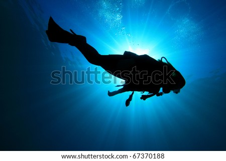 Underwater image of Scuba Diver in the ocean, silhouette against sun #67370188