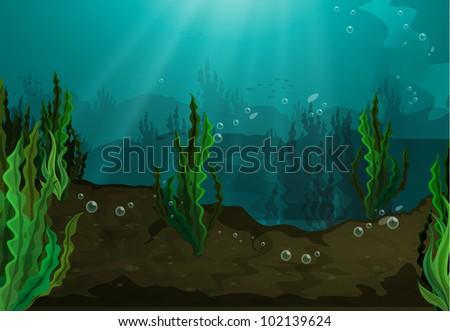 underwater in freshwater