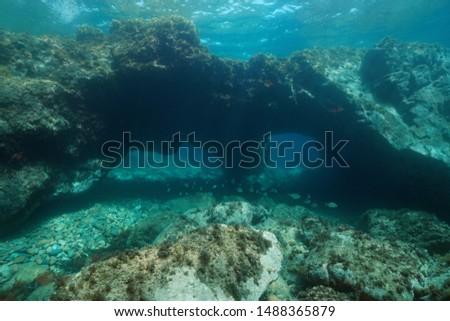Underwater large rock with holes in the Mediterranean sea, Spain, Costa Brava, Catalonia, Calella de Palafrugell #1488365879