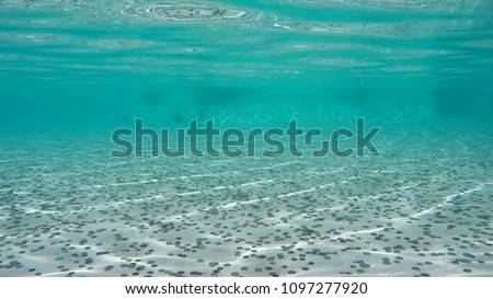 Underwater photo of the Trevi Fountain in Italian Fontana di Trevi is fountain in Trevi district in Rome Italy and is largest Baroque fountain in the and one of most famous fountains in the world