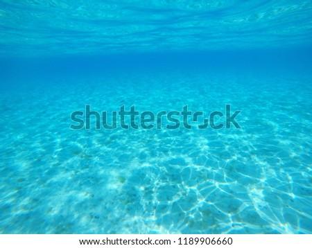 underwater photo with fish #1189906660