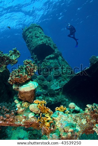 Underwater photographer and wreck