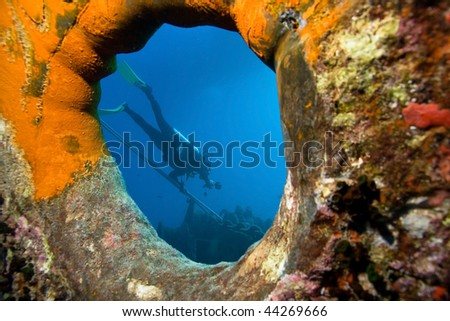 Underwater photographer by wreck