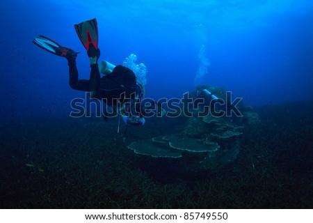 Underwater photographer diver - stock photo