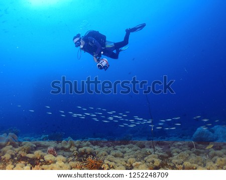 Underwater photography of scuba diver are swimming relaxing above the reef at Gulf of Thailand Sea. #1252248709