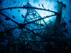 underwater photography underworld photography silhouette ship wreck vacation holiday travel