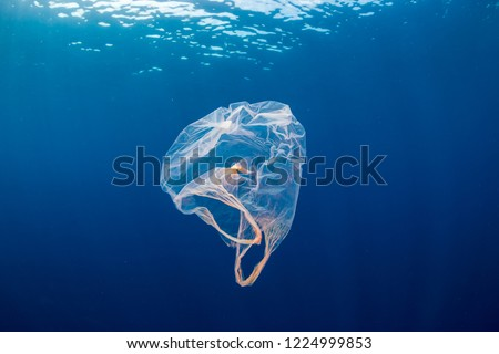 Underwater pollution:- A discarded plastic carrier bag drifting in a tropical, blue water ocean