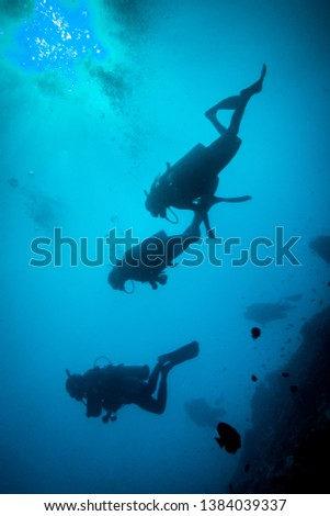 Underwater/scuba diving shot of silhouettes of divers from below, facing up to the surface. High contrast, black and blue image #1384039337