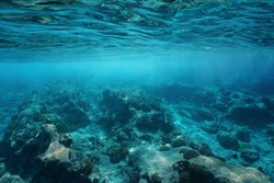Underwater sea surface clear water with natural sunlight and rocky seabed, Pacific ocean, Atoll of Rangiroa, Tuamotu, French Polynesia