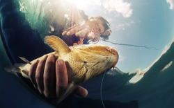 Underwater shot of the fisherman holding the fish
