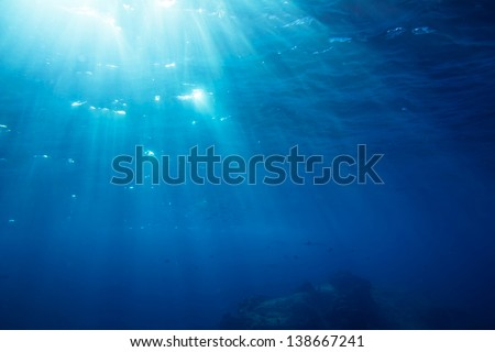 Underwater shot with sunrays and fishes in deep tropical sea #138667241