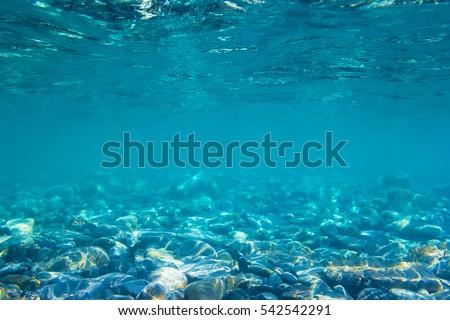 Underwater view in ocean #542542291