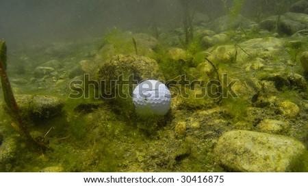 Underwater view of a golf ball in a water hazard.