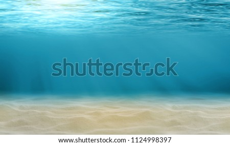 Underwater view of the sea surface or Tranquil underwater scene with copy space. #1124998397