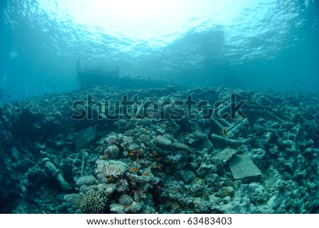 Underwater view of the shipwreck SS Lara which struck Jackson reef situated in the Straits of Tiran in 1982. Jackson Reef, Red Sea, Egypt.
