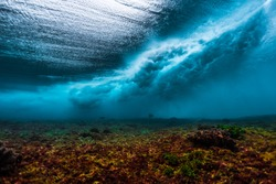 Underwater view of the surf spot with wave breaking over coral reef