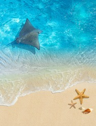 Underwater world. Image with stingray and ocean for 3d floor. Collage.