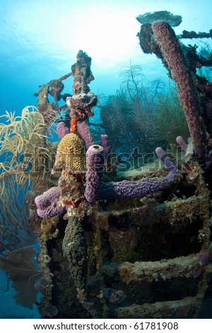 Underwater wreck of the ship Price Albert off the Coast of Roatan - stock photo