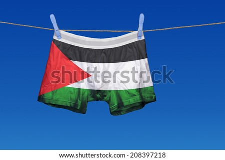 Underwear with the Palestine flag on a string against clear blue sky