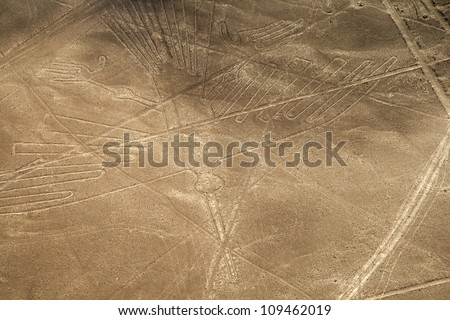 Unesco Heritage: Lines and Geoglyphs of Nazca, Peru - Condor - stock photo