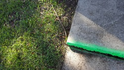 Uneven Sidewalk Tile Marked with Neon Green Paint Near Grass