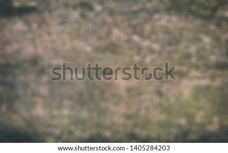 Unfocused, Blur phototography. Texture of ebony. Wooden background #1405284203