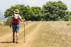 unfocused  pilgrim near Astorga  , Way of St James,  Camino de  Santiago, to Compostela, Leon, Spain
