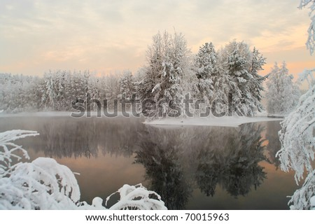 Unfrozen lake in the winter forests of Karelia, Russia. Black water and snowy brunches #70015963