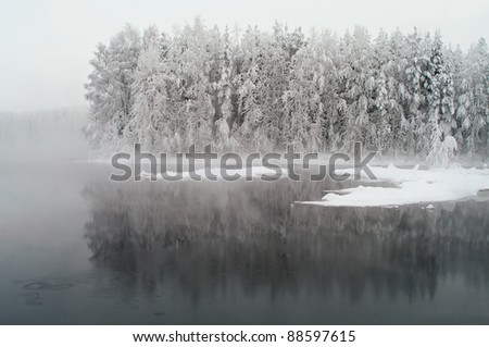 Unfrozen lake in the winter forests of Karelia, Russia. Black water and snowy brunches