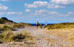Unidentifiable beach goers walk on a sandy path towards the beach.