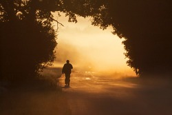 Unidentified man walking along the beautiful golden morning fog clad country road