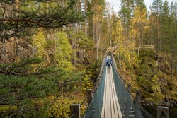 Unidentified man walks on the suspension bridge in Oulanka National Park at autumn in Finland. Hiker with backpack crossing the suspension bridge over the rapid river in Finnish national park