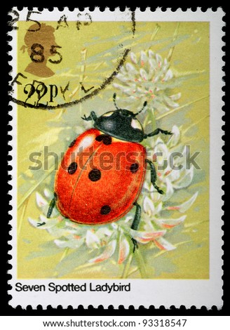 UNITED KINGDOM - CIRCA 1985: A British Used Postage Stamp showing Seven Spotted Ladybird Insect, circa 1985