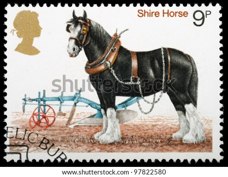 UNITED KINGDOM - CIRCA 1978 : A British Used Postage Stamp shows a Shire Horse, circa 1978