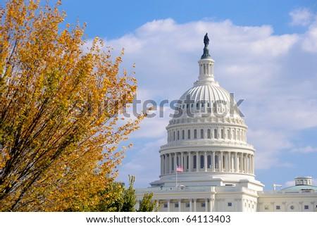 United States Capitol in Autumn